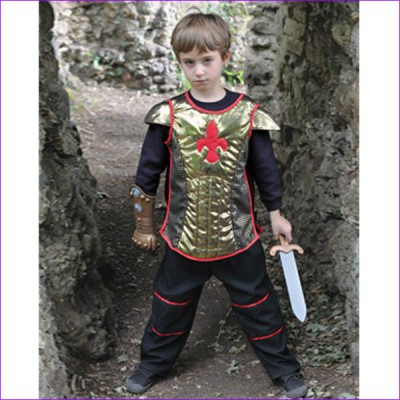 Boys Complete Brave Heart Medieval Knight Fancy Dress Up